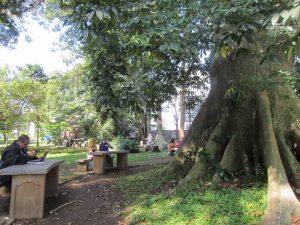 taman kota di Bogor, Taman Koleksi