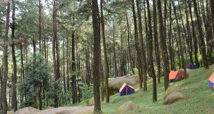 Hutan Pinus Gunung Pancar, tempat wisata di sekitar Sentul