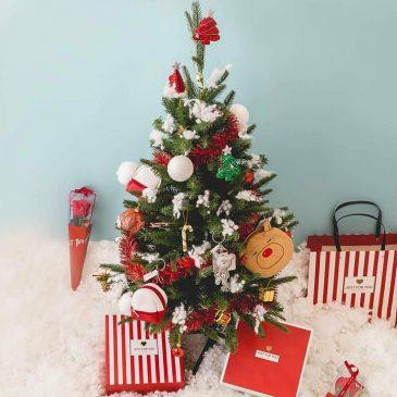 pernak pernik Natal, Miniso, Anak Kota